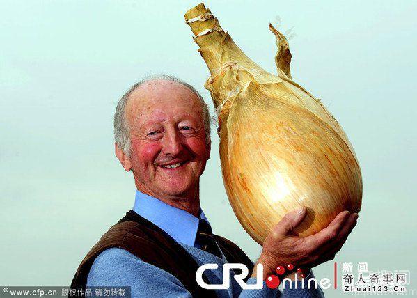 世界上最大的洋葱有多大?重达7.03公斤【图】