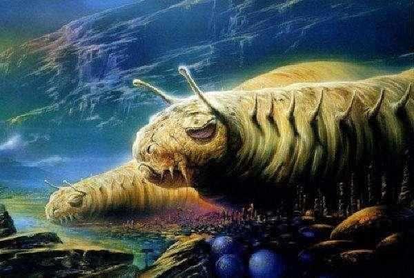 人类只是宇宙细菌?霍金亲传弟子现身说法,揭开外星生物真实面目