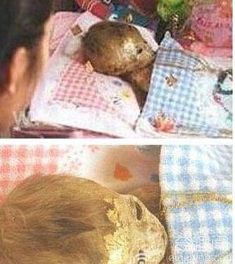 泰国不化童尸之谜 头发指甲仍不断生长