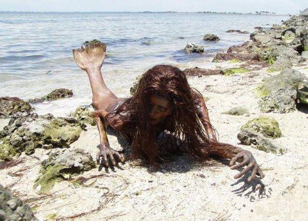 世界上美人鱼真的存在吗? 美人鱼真身吓人图片